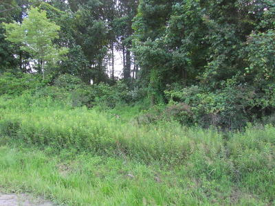 Benton Residential Lots & Land For Sale: Ridge Rd Road