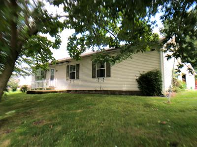 Single Family Home For Sale: 523 Clover Avenue