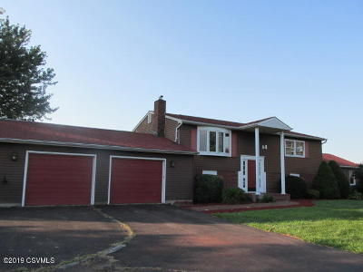 Bloomsburg Single Family Home For Sale: 22 Long View Drive