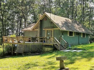 Single Family Home For Sale: 517 Snowflake Lane