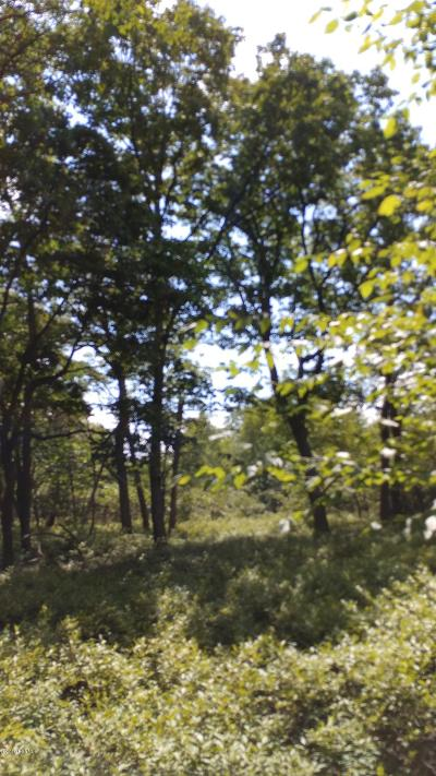Catawissa PA Residential Lots & Land For Sale: $49,000