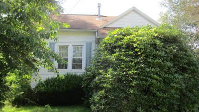 Single Family Home For Sale: 351 Summerhill Avenue