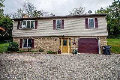 Catawissa PA Single Family Home For Sale: $232,900