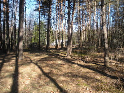 Elk County Residential Lots & Land For Sale: Robin Rd