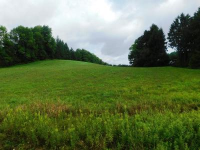 Elk County Residential Lots & Land For Sale: Bucktail Rd