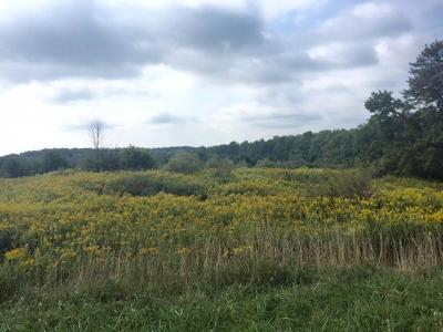 Weedville PA Residential Lots & Land For Sale: $159,900