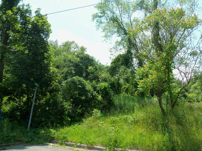 Residential Lots & Land For Sale: [500-699] Schissle St