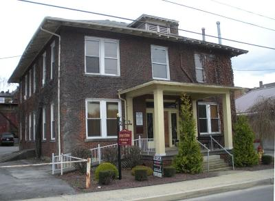 Elk County Commercial For Sale: 222 Race St