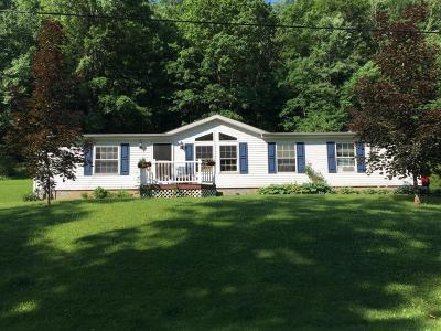 Emporium PA Single Family Home For Sale: $125,000