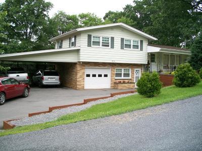 Emporium PA Single Family Home For Sale: $124,900