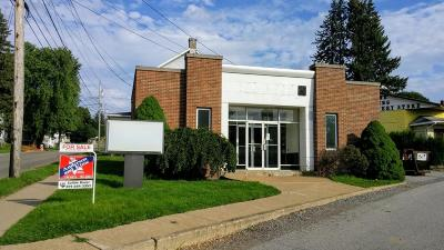 Saint Marys PA Commercial For Sale: $79,000