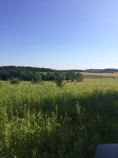 Residential Lots & Land For Sale: Boone Mountain Rd
