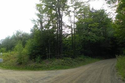Potter County Residential Lots & Land For Sale: Maple Ln