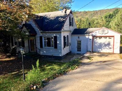 Single Family Home For Sale: 5889 Ridgway-Johnsonburg Rd
