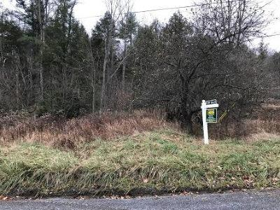 Weedville Residential Lots & Land For Sale: Spring Run Rd