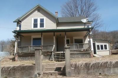 Potter County Single Family Home For Sale: 91 School St