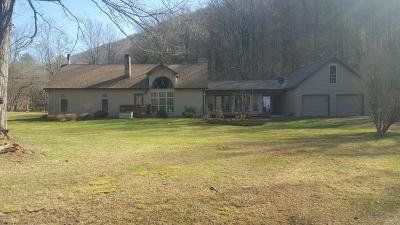 Emporium PA Single Family Home For Sale: $160,000