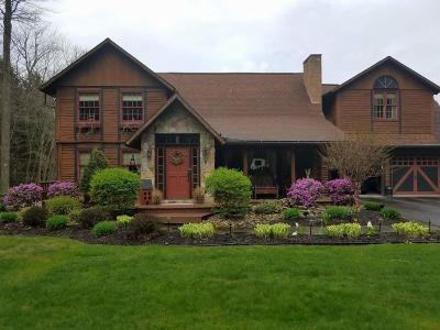 Saint Marys PA Single Family Home For Sale: $425,000