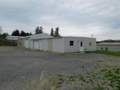 Elk County Commercial For Sale: 169 West Creek Rd