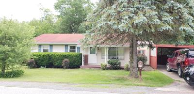 Elk County Single Family Home For Sale: 925 Plymouth Rd