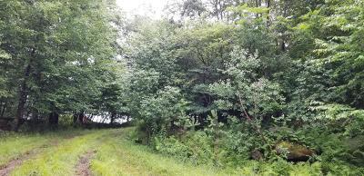 Elk County Residential Lots & Land For Sale: 131 El Dora Dr