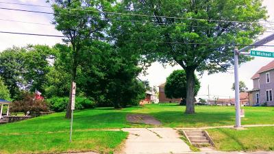 Elk County Commercial For Sale: 158 N Michael St