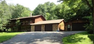 Ridgway Single Family Home For Sale: 963 Mohan Run Rd