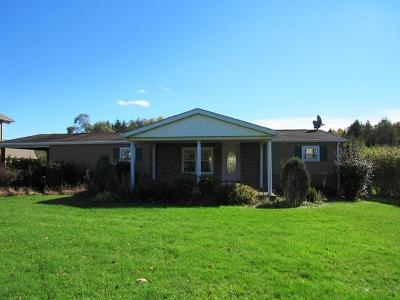 Elk County Single Family Home For Sale: 159 Wehler Rd