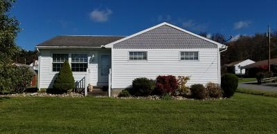 Elk County Single Family Home For Sale: 817 Birch Rd