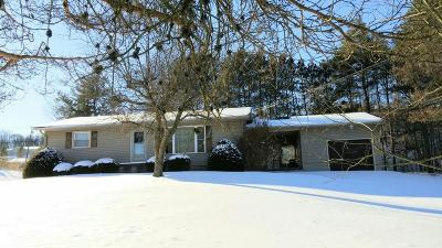 Single Family Home For Sale: 948 Plymouth Rd