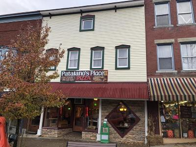 Elk County Commercial For Sale: 163 Main St