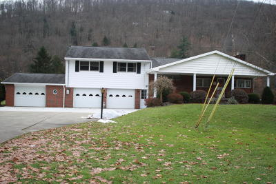 Cameron County Single Family Home For Sale: 2033 Rich Valley Rd
