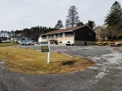 Elk County Commercial For Sale: 106 Wehler Rd
