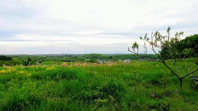 Saint Marys PA Residential Lots & Land For Sale: $345,000