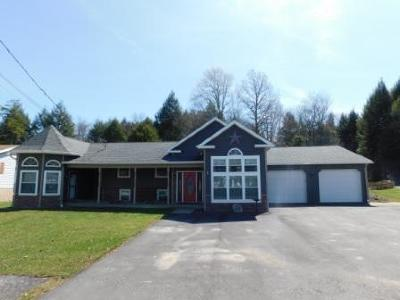 Elk County Single Family Home For Sale: 119 Teaberry Rd