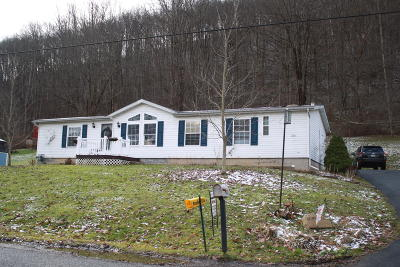 Emporium PA Single Family Home For Sale: $99,500