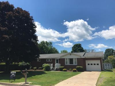 Ridgway Single Family Home For Sale: 624 N Maple Ave