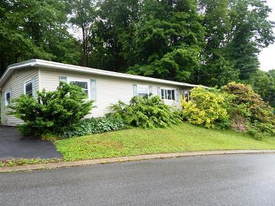 Johnsonburg Single Family Home For Sale: 207 Hill St