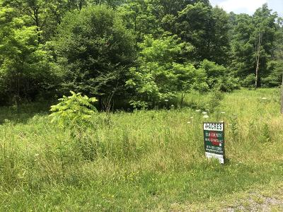 Elk County Residential Lots & Land For Sale: Quehanna Hwy