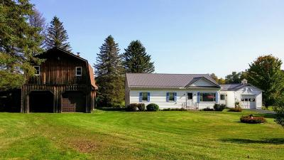 Elk County Single Family Home For Sale: 847 Dill Hill Rd