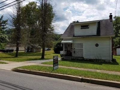Ridgway Single Family Home For Sale: 527 W Main St