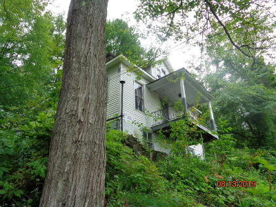 Elk County Single Family Home For Sale: 81 W Cardott St
