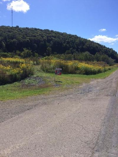 Elk County Residential Lots & Land For Sale: Buena Vista Hwy