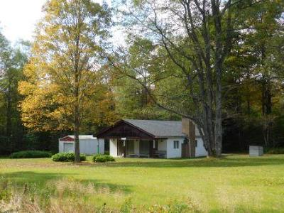Elk County Single Family Home For Sale: 851 Sauer Rd