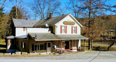 Single Family Home For Sale: 23154 Quehanna Hwy