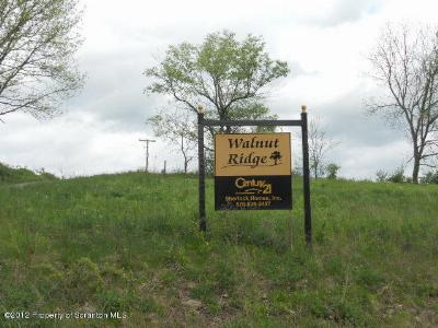 Mehoopany Residential Lots & Land For Sale: 15 Walnut Ridge Drive