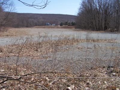 Lackawanna County Residential Lots & Land For Sale: Chapman Lake Rd. To Carey Rd.