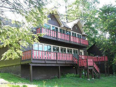Susquehanna County Single Family Home For Sale: 201 Fall Lane