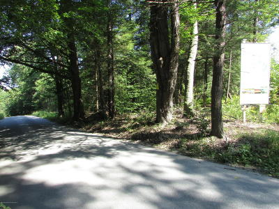 Wyoming County Residential Lots & Land For Sale: Lot 39 Beacon