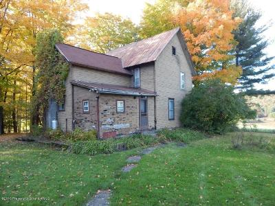 Susquehanna County Single Family Home For Sale: 1362 Mt Valley Road